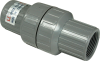 1/2 in. NPT PVC Check Valve -- 5770062 - Image