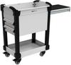 MultiTek Cart 2 Drawer(s) -- RV-GB33S2F106B -Image