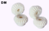 10mm PD Injection Molded Miter Gears -- DM0.5-20 - Image