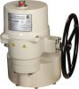 Quarter-Turn Electric Actuator -- P13 Series