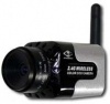 Wireless PAL Camera