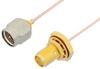 SMA Male to SMA Female Bulkhead Cable 48 Inch Length Using PE-034SR Coax, RoHS -- PE34243LF-48 -Image