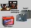 Standard 12-Volt Unitech Batteries -- 12N16-4B-11