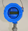 Explosion Proof Local Flow Rate Transmitter -- RT-30EX - Image