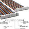 Rectangular Cable Assemblies -- H3CCS-4036M-ND -Image