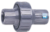 Check Valves with Pipe Thread Connection -- GO-01350-24