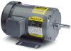 Inverter/Vector AC Motors -- EM8003T