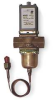 Valve,Water,1 In -- 4LZ99
