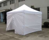 Enclosed Canopy Shelter,10 Ft 8In x 20Ft -- 11C540