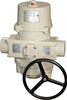 Spring Return Quarter-Turn Electric Actuator -- PAO Series