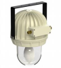 Ex De IIC HID Pendant Light Fitting -- ORB.125.HM - Image
