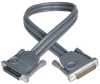 Daisychain Cable for NetDirector KVM Switch B020-Series and KVM B022-Series, 6-ft. -- P772-006 - Image