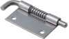 Retractable Door Removal Hinges -- F6-23-S8AW -Image
