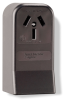 Pass & Seymour® -- Power Outlet Receptacles & Plugs - 385 - Image