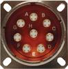 MIL-DTL-38999 Sz 11 Quad Plug to Plug -- 02990Y-2XXX