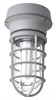 Vaporproof Fluorescent Fixture with Globe and Guard -- VW42CFUNG - Image
