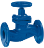 Flanged End Globe Valve -- BOA-W