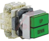 Dual Pushbutton, Non-Illum'd Green-Green, (2) Moment (w/interlock),2NO-2NC, 10A -- 70060402