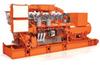 Waukesha APG (850 -1100 kW)