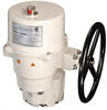 Quarter-Turn Electric Actuator -- P9 Series