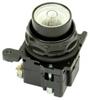 Illuminated Pushbutton Operator -- E34SB240