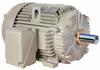 IEEE 841 X$D Ultra® Motors -- X$D Ultra® 841 IEC Extra Severe Duty Motors (IP55) -- View Larger Image
