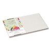 Peacock Sulphite Construction Paper, 76 lbs, 12 x 18, Pearl -- P8812