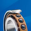 Hybrid Bearings