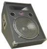Active 125W RMS Floor Wedge Speaker with 12