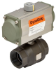 Pneumatically Actuated 2 PC Carbon Steel Ball Valve -- P2C Series