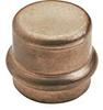 Cap (Press) -- View Larger Image