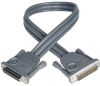 Daisychain Cable for NetDirector KVM Switch B020-Series and KVM B022-Series, 2-ft. -- P772-002 - Image