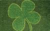 4 Leaf Clover - 18
