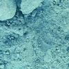 Blue Bice -- 10184