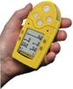 BW Technologies Gas Alert Micro