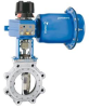Jamesbury® Series 800 Butterfly Valve -- 815/830