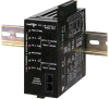 Dual Loop Controller with 2 Analog Outputs -- DLC01001 -- View Larger Image