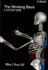 Ergonomics and Human Factors Publication -- The Working Back--A Systems View