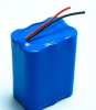 21.6V 2.2Ah Battery for Vacuum Cleaner