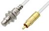 75 Ohm RCA Male to 75 Ohm RCA Female Bulkhead Cable 12 Inch Length Using 75 Ohm PE-B159-WH White Coax -- PE38135/WH-12 -Image