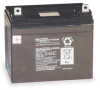 Rechargeable Battery,Volts 6 DC -- 2PFW1