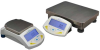 ADAM High Precision Balances