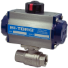2-Piece SS Ball Valve -- IS-2P Series