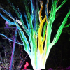 MACBEAM® Fiber-Optic Light Source