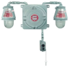 Explosionproof Emergency Lighting Unit with Fixture -- ELS22812T1
