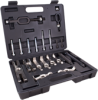 Multipurpose Bearing/Puller Set -- P300