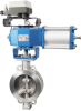BW Series Butterfly Control Valve