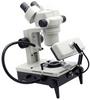 Microscope, Stereo Zoom (Binocular) -- 26800B-386-ND -Image