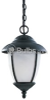 One-Light Outdoor Hanging Lantern Fixture -- 69248PBLE-12