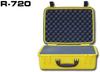 R-Series -- R-720D